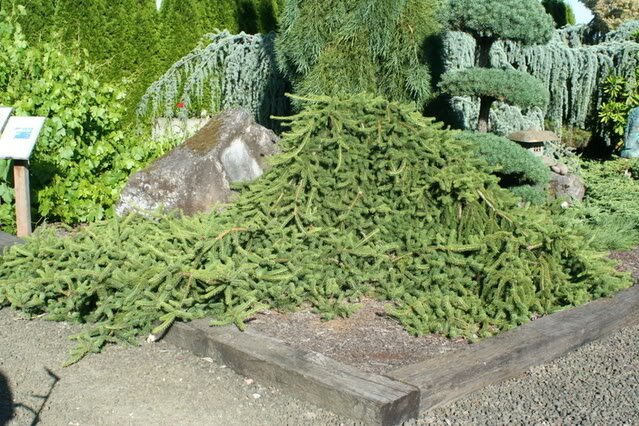 Statsny Sculpture Gardens